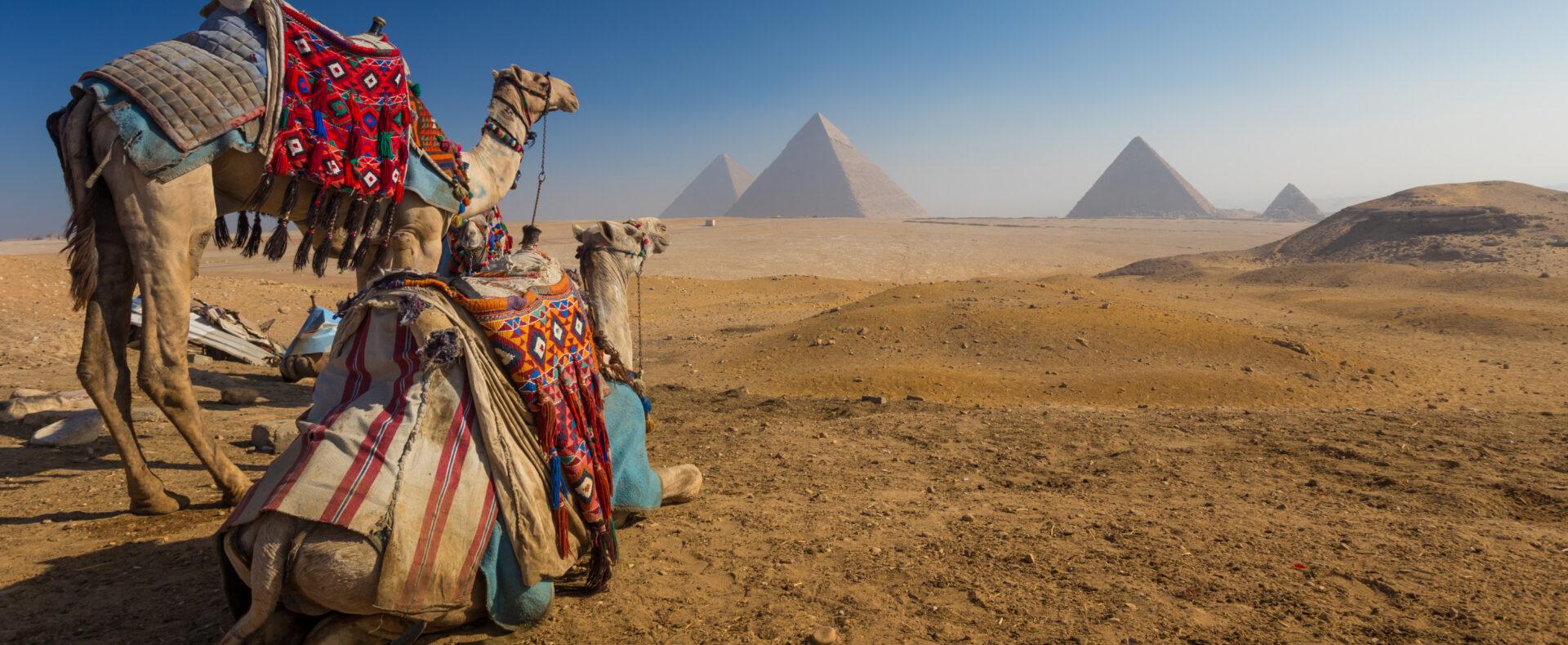 Екскурсійні тури  ЄГИПЕТ  від  8500 грн    (ALL INCLUSIVE)